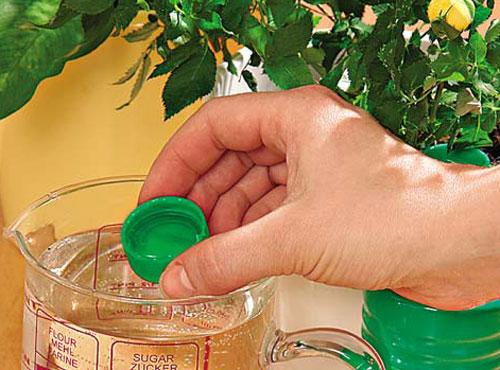 Удобрение для растений своими руками фото